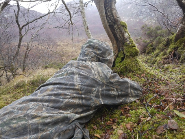 Getting Wet, watching deer.