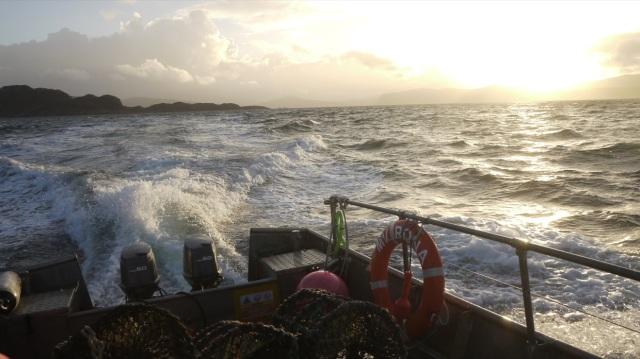 Last Fishing of 2013