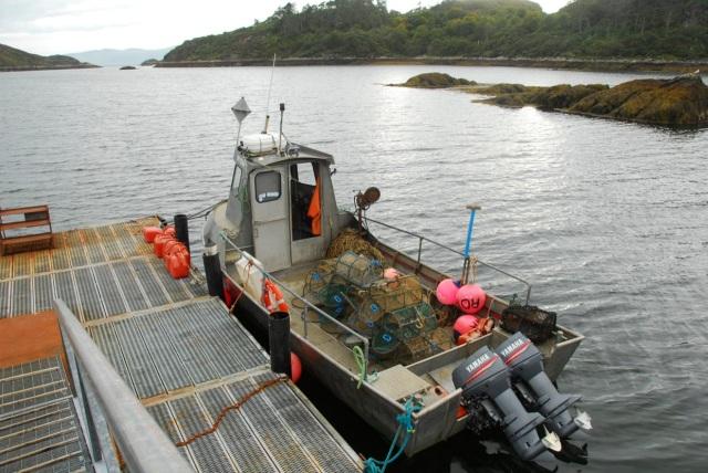 The Last Fishing