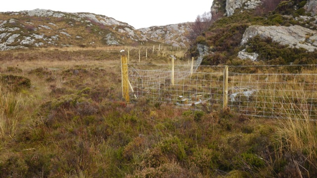 At Last the Sheep Fence gets going again.