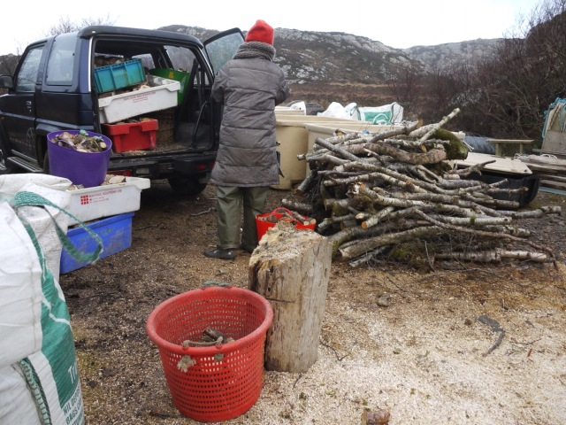 Keeping Up The Firewood Supplies