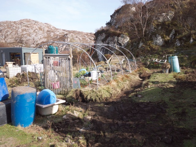 Poly Tunnel Tidy up