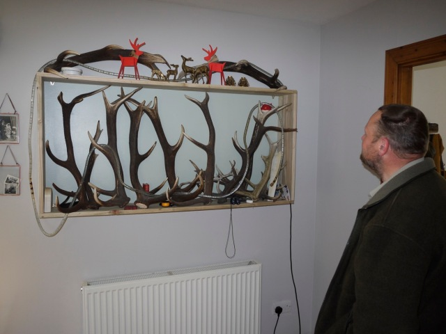 Admiring the Antlers