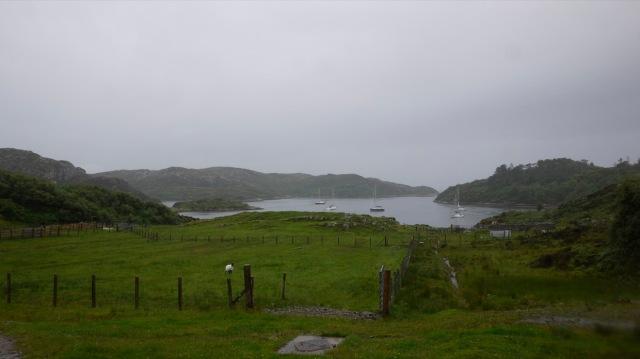 Yesterday, Torrential Rain on Rona.