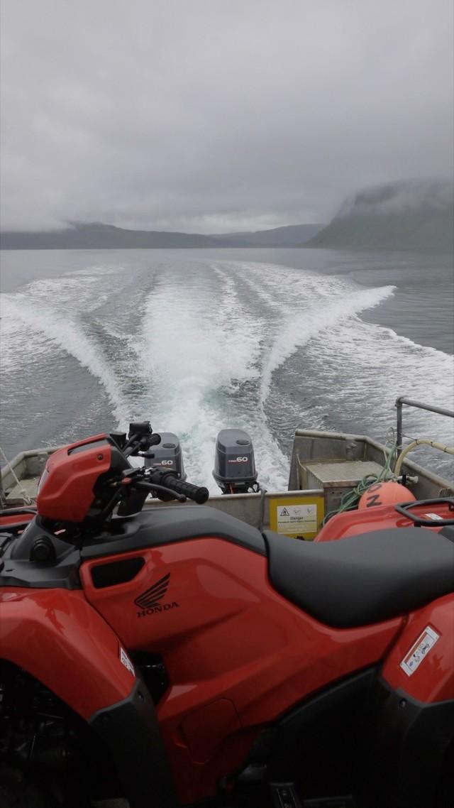 !5 knots
