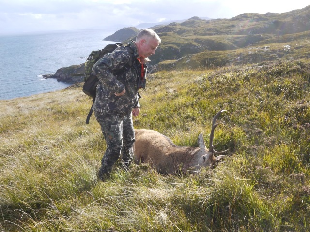 Another Cull Stag
