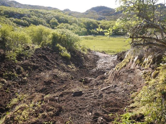 2/3 metres of peat
